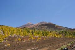 Volcans dans Tenerife Photographie stock libre de droits