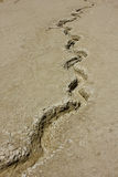 Volcans de boue Photographie stock libre de droits