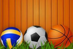 Volee la bola, el balón de fútbol, y el baloncesto con el fondo stock de ilustración