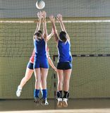 Voleibol Foto de Stock Royalty Free