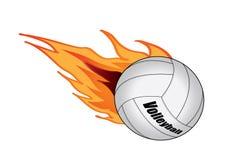 Voleibol Imagens de Stock
