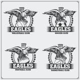 Voleibol, basebol, futebol e logotipos e etiquetas do futebol Emblemas do clube de esporte com águia Fotografia de Stock Royalty Free