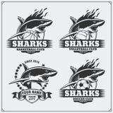 Voleibol, basquetebol e logotipos e etiquetas do futebol Emblemas do clube de esporte com tubarão Fotos de Stock Royalty Free
