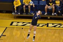 2015 voleibol del NCAA - Tejas @ Virginia Occidental Imagen de archivo
