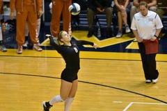 2015 voleibol del NCAA - Tejas @ Virginia Occidental Fotos de archivo