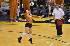 2015 voleibol do NCAA - Texas @ WVU Fotos de Stock