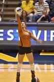 2015 voleibol do NCAA - Texas @ WVU Imagem de Stock Royalty Free