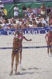 Voleibol profesional de las mujeres de Coors Light, Imagenes de archivo