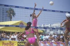 Voleibol profissional das mulheres de Coors Light Foto de Stock Royalty Free