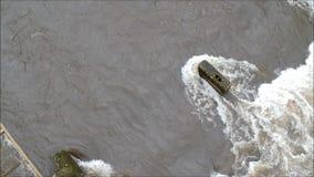 Voler au-dessus d'une rivière en crue en hiver banque de vidéos