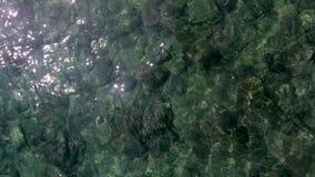 Voler au-dessus de l'eau de mer Photographie stock