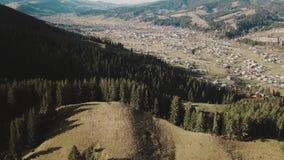 Voler au-dessus de la belle forêt de montagne en montagnes carpathiennes en automne les gens sur la montagne apprécient un ensole banque de vidéos