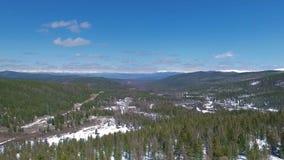 Voler au-dessus des arbres de neige Horizontal de l'hiver banque de vidéos