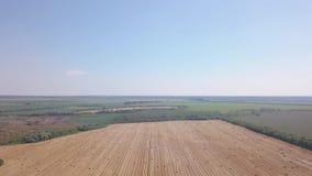 Voler au-dessus du beau champ avec la balle de foin Longueur aérienne 4k de bourdon banque de vidéos