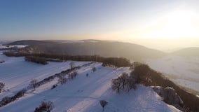 Voler au-dessus du paysage couvert de neige d'hiver banque de vidéos