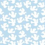 Voler blanc sans couture de colombes Image stock