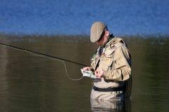 Voler-pêcheur Photographie stock