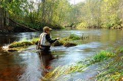 Voler-pêcheur Images stock