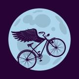 Voler pendant la nuit Image libre de droits