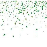 Voler vert ou tomber part Fond abstrait de feuillage de vecteur illustration libre de droits