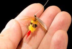 Volez pour pêcher des poissons dans une main sur un fond noir Image libre de droits