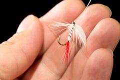 Volez pour pêcher des poissons dans une main sur un fond noir Image stock
