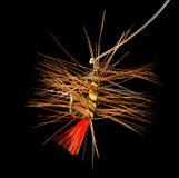 Volez pour pêcher des poissons sur un fond noir Photographie stock libre de droits