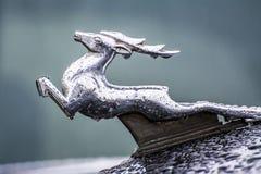 Volga21 Obrazy Royalty Free