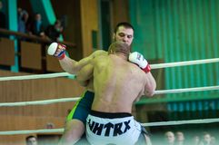 Volga Federal District Championship in mixed martial arts Royalty Free Stock Photography