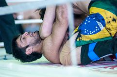 Volga Federal District Championship in mixed martial arts... Royalty Free Stock Images