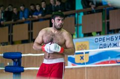 Volga Federal District Championship in mixed martial arts... Stock Images