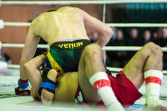 Volga Federal District Championship in mixed martial arts... Stock Image