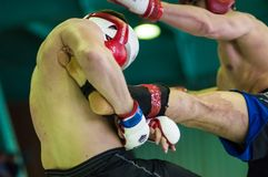 Volga Federal District Championship in mixed martial arts... ... Stock Photography