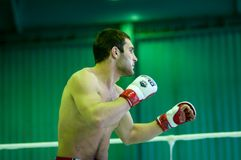 Volga Federal District Championship in mixed martial arts... ... Stock Image