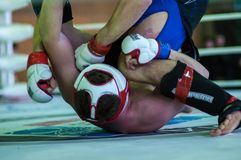 Volga Federal District Championship in mixed martial arts... ... Stock Images