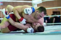 Volga Federal District Championship in mixed martial arts... ... Royalty Free Stock Photos