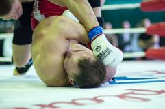 Volga Federal District Championship in mixed martial arts... ... Royalty Free Stock Image