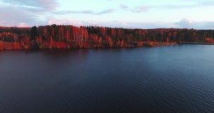 Volga River i höst på quadcopter för flyg- sikt för soluppgång över skogen 4k arkivfilmer