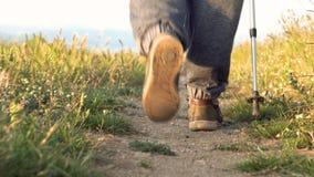 Volgend schot van onherkenbare hogere wandelaar die met trekkingspool in platteland lopen stock footage