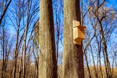 Volière dans la forêt photographie stock libre de droits