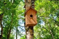 Volière en bois accrochant sur un fond d'arbre de bouleau en parc de ville Photo stock