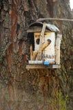 Volière en bois sur un arbre Image stock