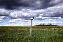 Volière et nuages Image libre de droits