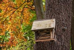 Volière sur un arbre en parc Image stock