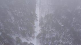 Voli con il fuco sopra i racconti dell'inverno con neve archivi video