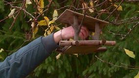 Voli?re accrochant sur un arbre en automne banque de vidéos