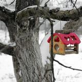 Voljär Förlagematare för fåglar på ett träd i vinter arkivfoton