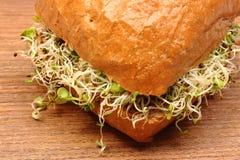 Volkorenbroodbroodje met luzerne en radijsspruiten Stock Foto's