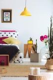 Volks moderne slaapkamer met cactus stock fotografie