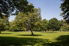 Volksgarten park w Kolonia Zdjęcie Stock